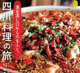 成都版キタナシュラン10