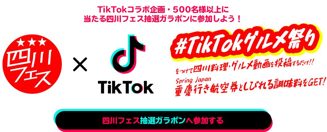 2019tiktok_img